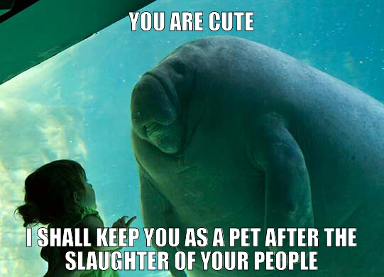 memedroid images tagged as manatee page 1