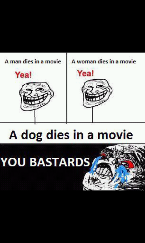 A dog dies in a movie - Meme by JennYernaS :) Memedroid