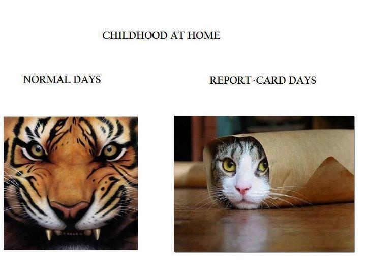 school days