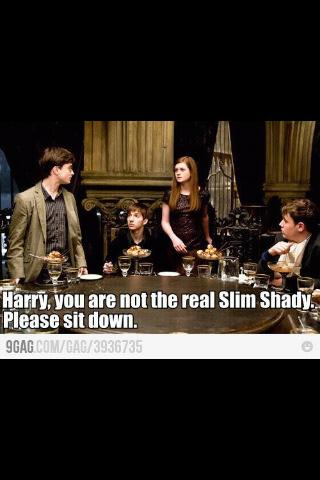 shady harry