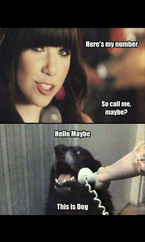 Hello This Is Dog Meme By Eriktheman Memedroid