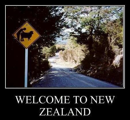 New Zealand From An Australian Perspective Meme By Den100 Memedroid