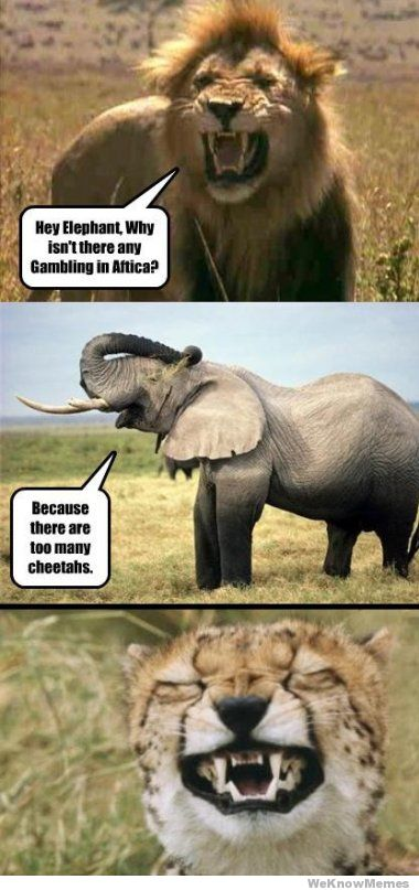 Cheetah Meme By Phill0w Memedroid