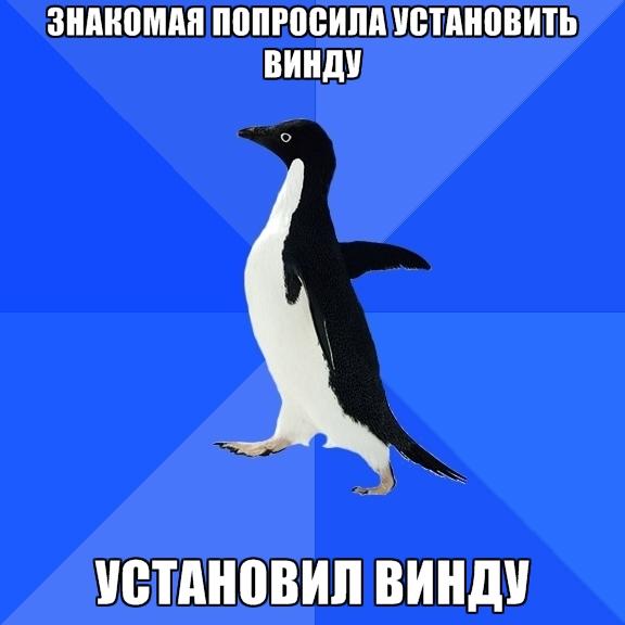Socially Awkward Penguin - знакомая попросила установить винду установил винду