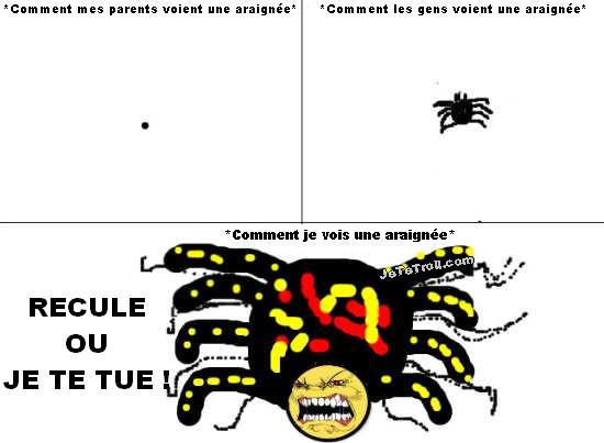 Les araignées et moi, ça fait 15 ! - meme