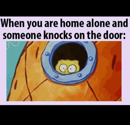 home alone - meme