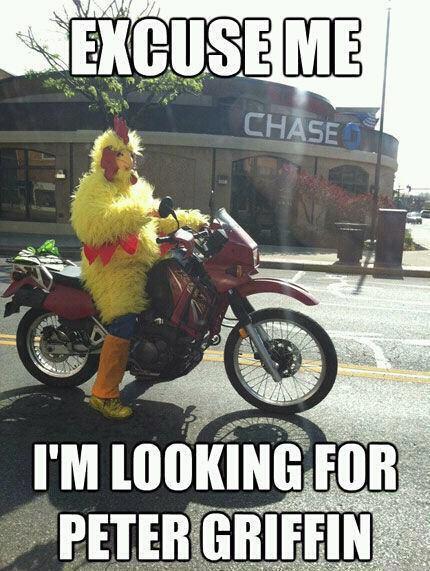 Chicken fight - meme