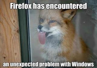 Fire fox - meme