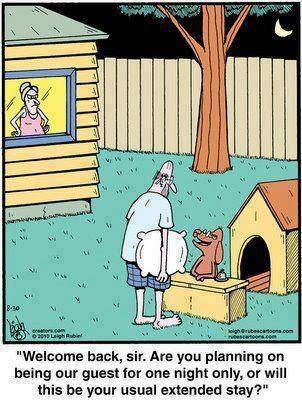50437aec89d7c extended stay in the doghouse meme by martinlutherblingiii,Doghouse Meme