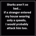 sharks..