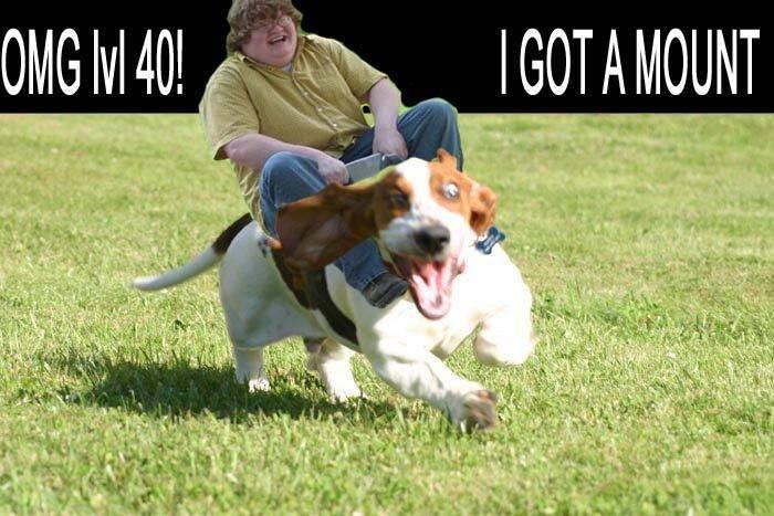 level 40 - meme