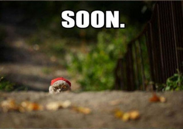 Soon.. - meme