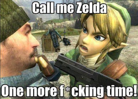 the name is link, bitch - meme
