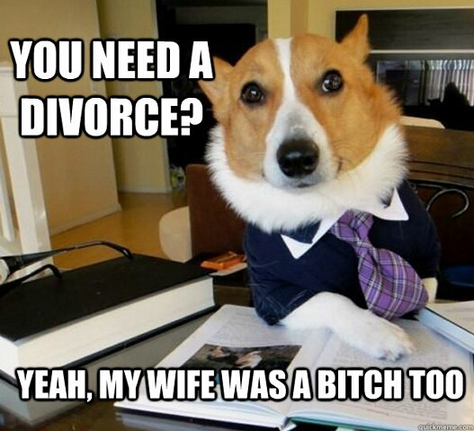 lawyer dog - meme