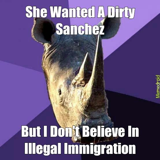 Racist Rhino - meme