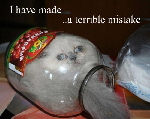 terrible - meme