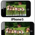 iphone 4s vs iphone 5(i hate iphone)