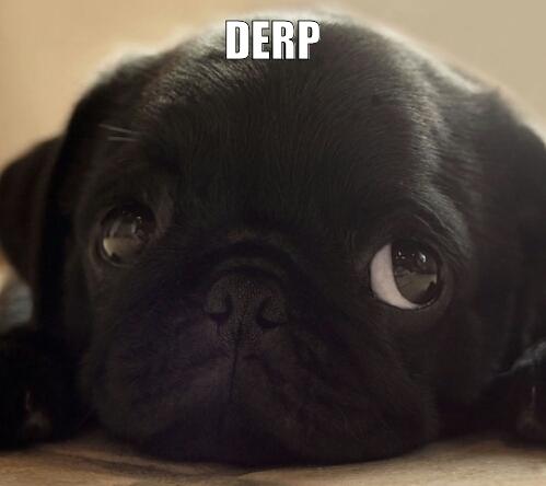 Go home snoop dog, you are sober - meme
