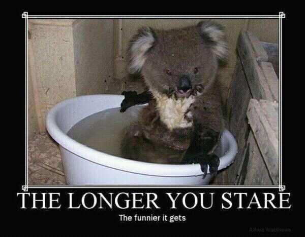 the longer you stare - meme