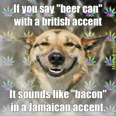 5007c66adeaeb mmmm bacon and beer meme by j112896 ) memedroid