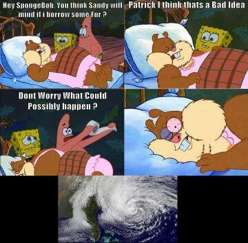 Sorry if repost! Just loved this so much. Everyone in affected areas please stay safe! - meme