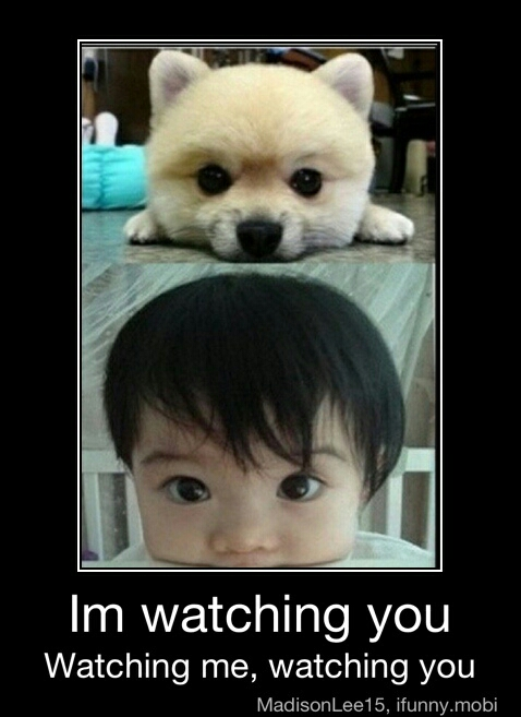 watching you - meme