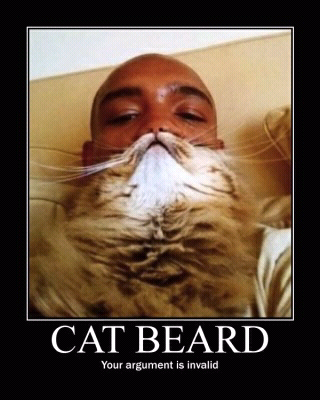 4fe00827c3e99 cat beard meme by bieberfan ) memedroid