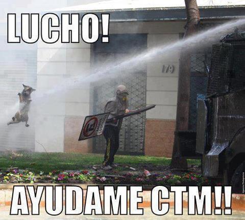 luchooo - meme