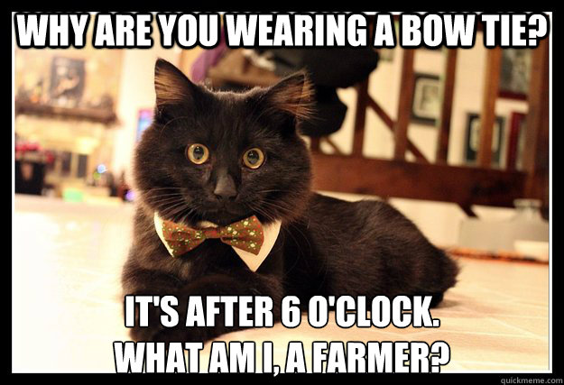 3Ai9Xz4Nj0Sf why are you wearing a bow tie? ) memedroid